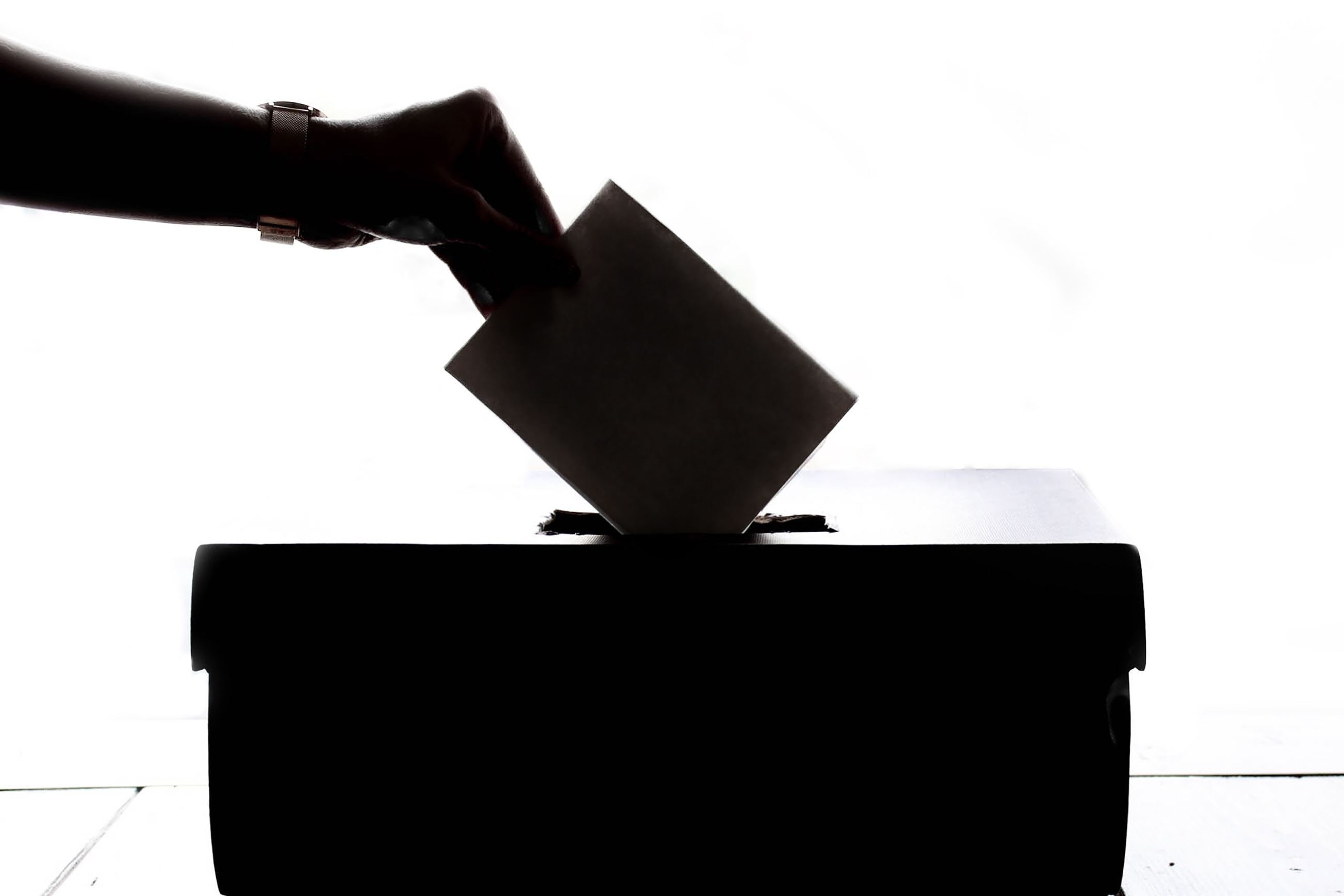 STOCK PHOTO ballot-black-and-white-black-and-white-