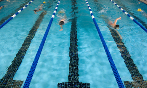 People Swimming Laps in Pool Lanes Opens in new window